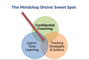 Mindshop Online Sweet Spot